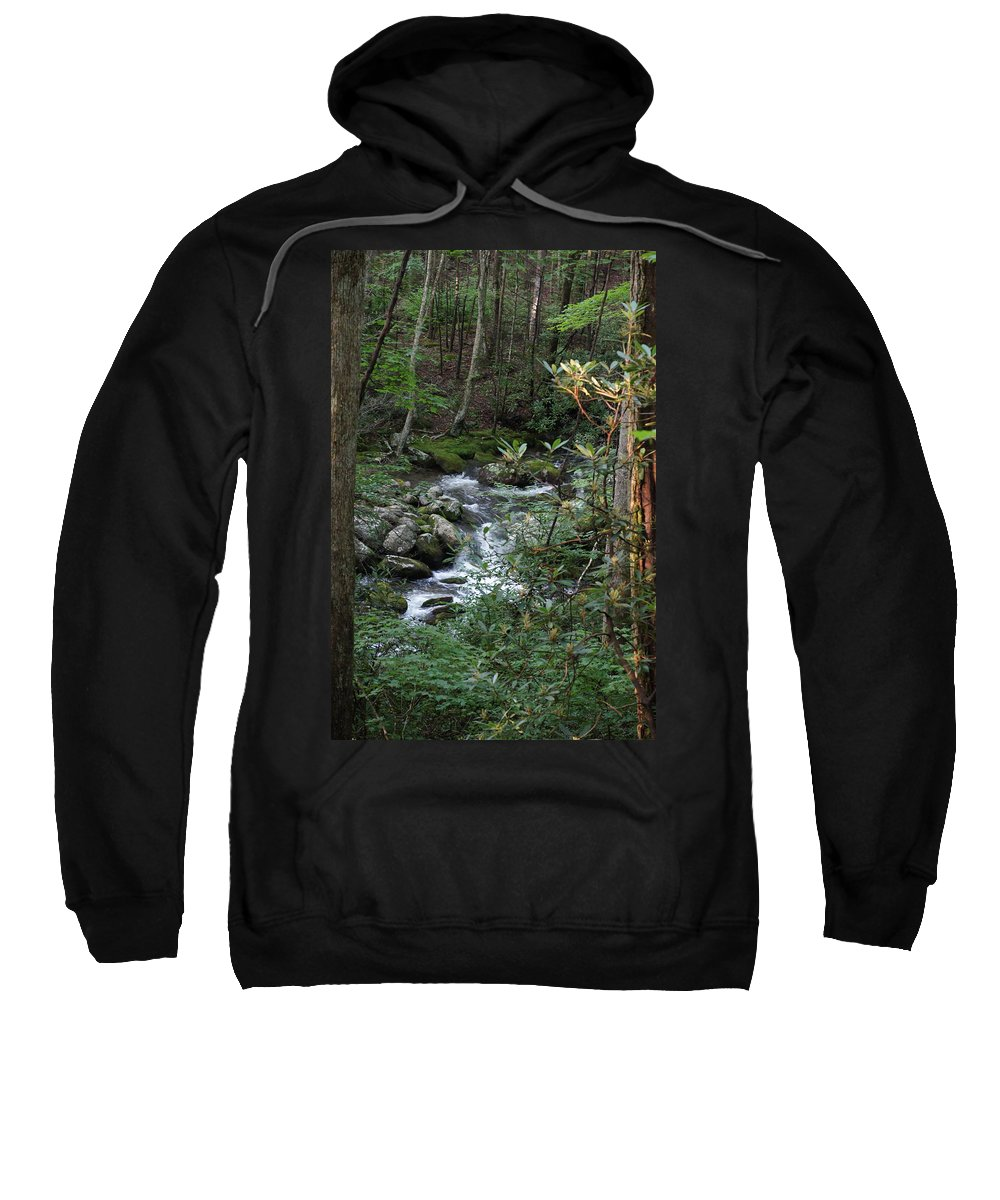 Stream Sweatshirt featuring the photograph Stream by Megan Cohen