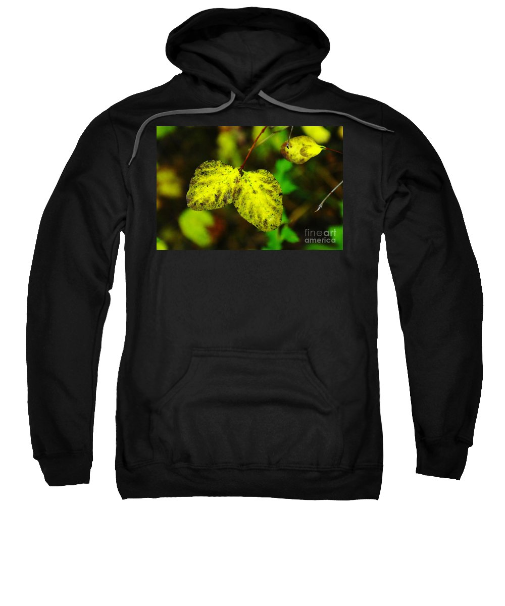 Leaves Sweatshirt featuring the photograph A Bright Yellow Dying by Jeff Swan