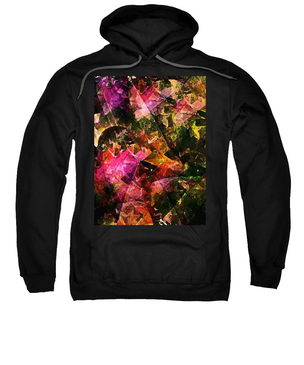 Abstract Sweatshirt featuring the photograph Abstract 270 by Pamela Cooper