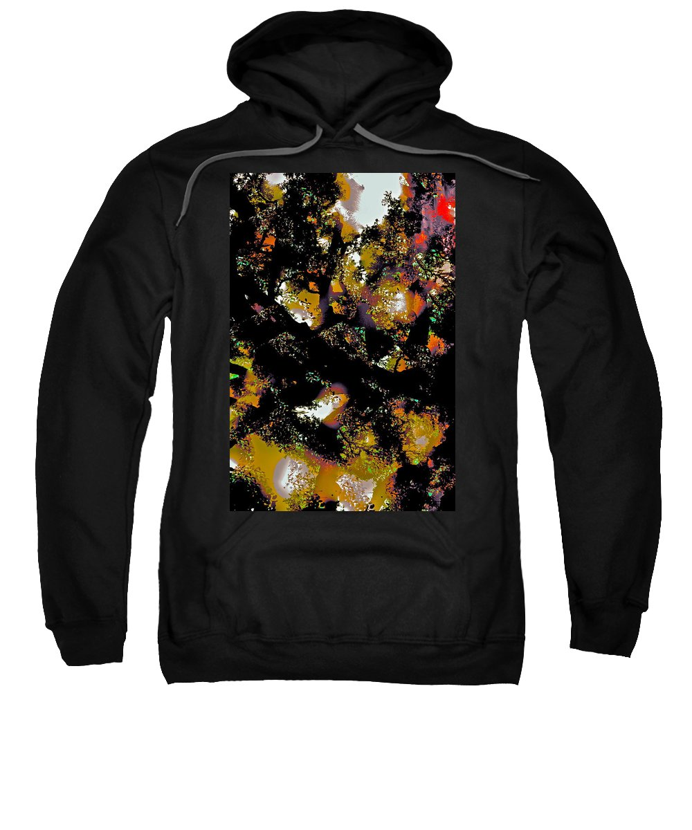 Abstract Sweatshirt featuring the photograph Abstract 84 by Pamela Cooper