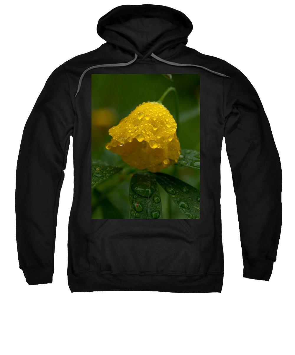 Lehtokukka Sweatshirt featuring the photograph After The Rain by Jouko Lehto
