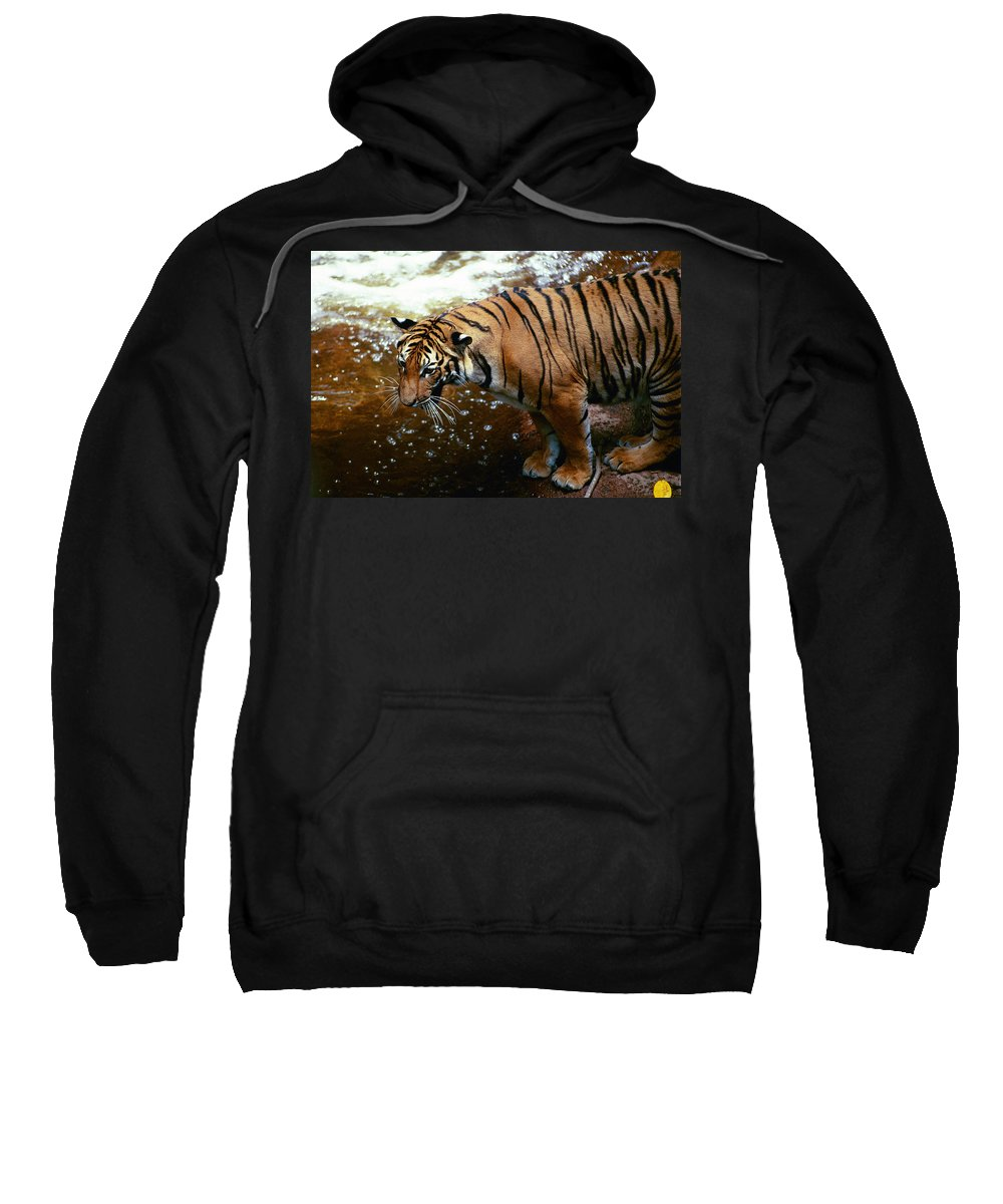 Sweatshirt featuring the photograph Ahhh by Michael Frank Jr