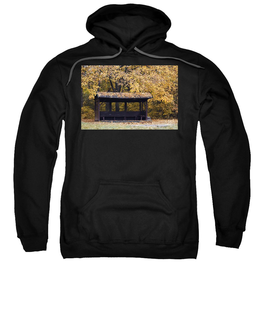 Autumn Sweatshirt featuring the photograph Alcove In The Autumn Park by Michal Boubin