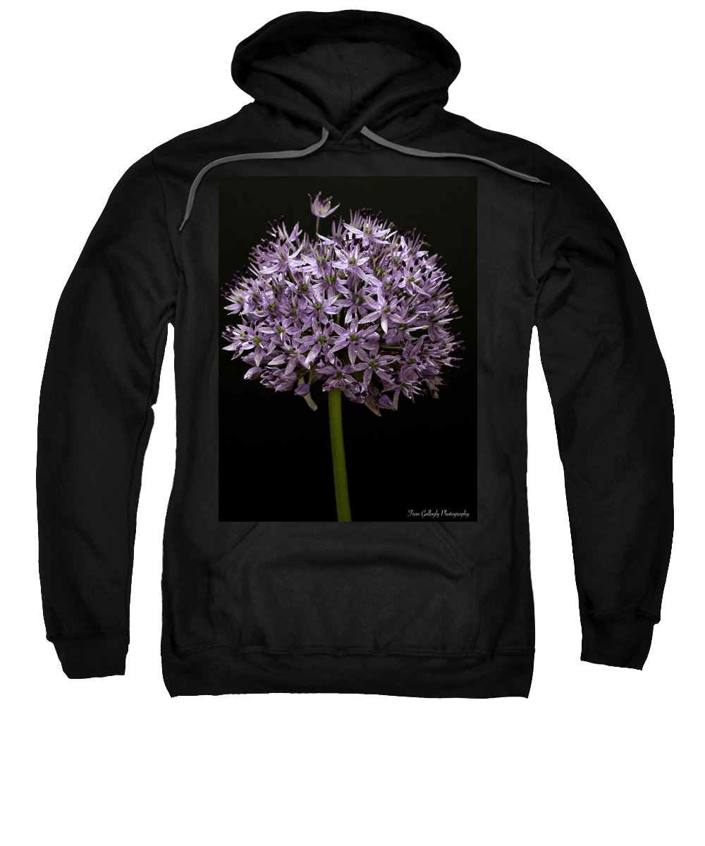 Flower Sweatshirt featuring the photograph Alium by Fran Gallogly