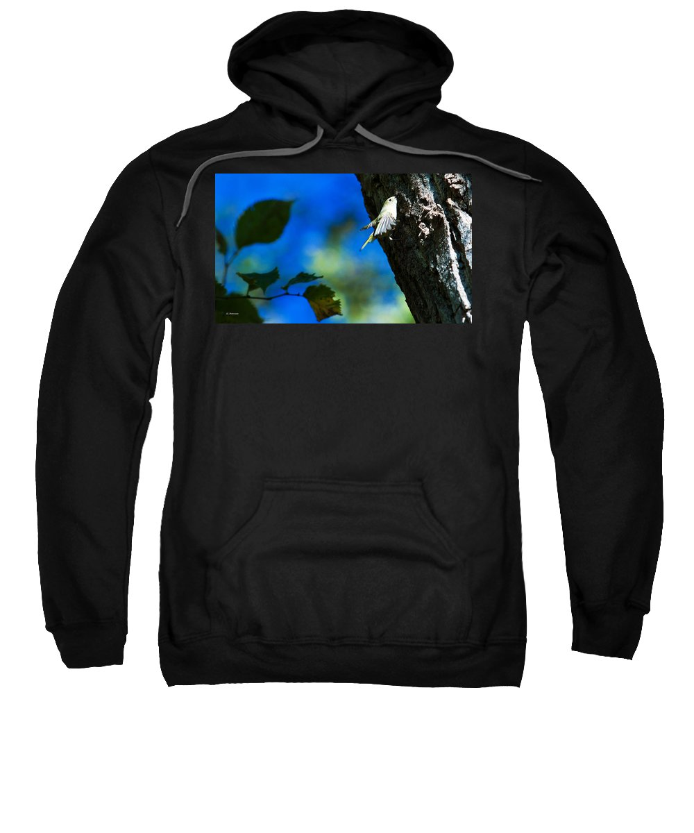 American Goldfinch Sweatshirt featuring the photograph American Goldfinch Leaving by Edward Peterson