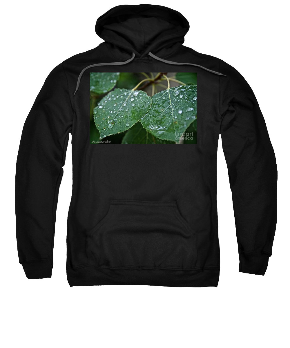 Outdoors Sweatshirt featuring the photograph Aspen by Susan Herber