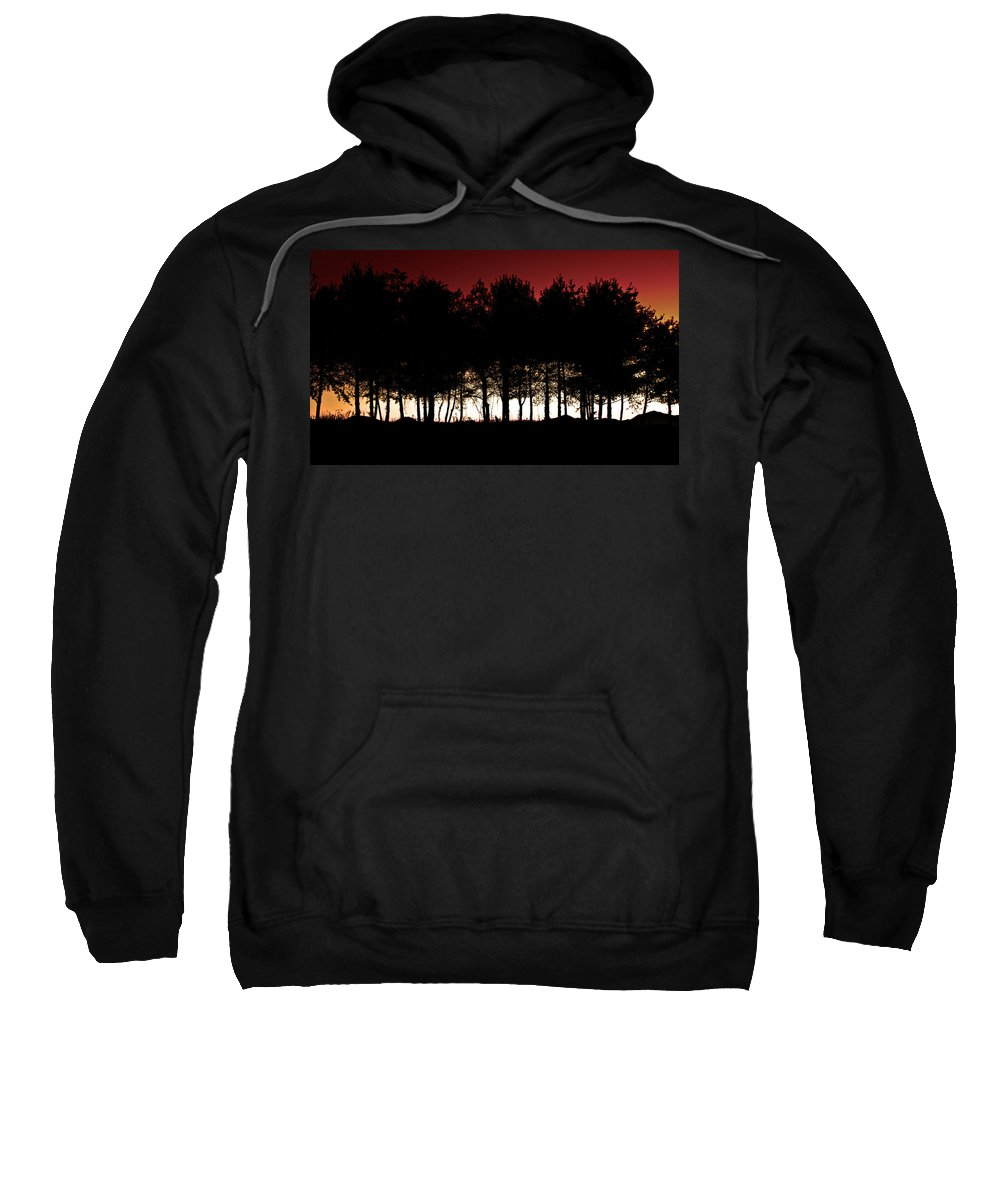 Trees At Dusk Sweatshirt featuring the photograph At Dusk by Gray Artus