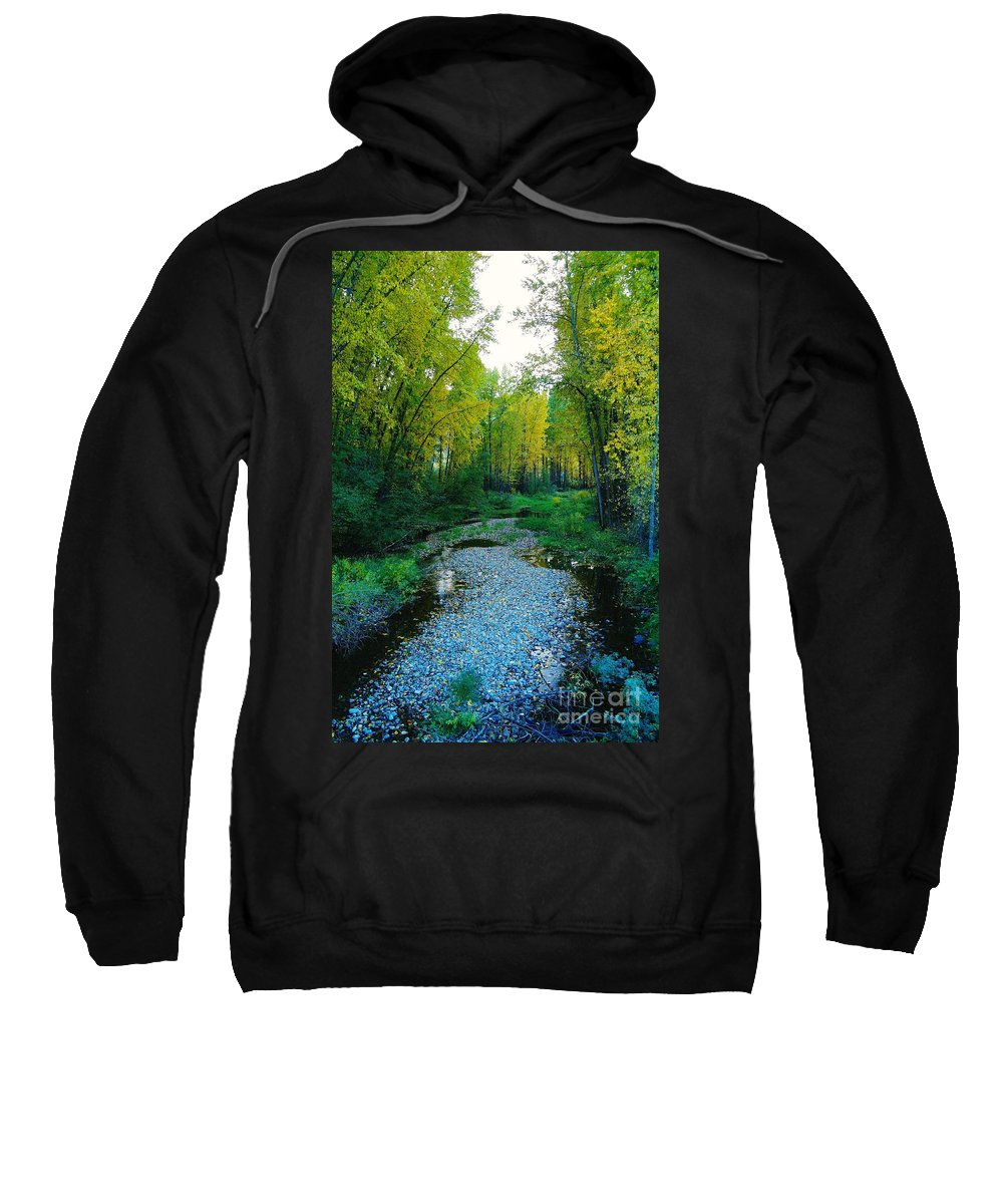 Trees Sweatshirt featuring the photograph Autumn Hue by Jeff Swan