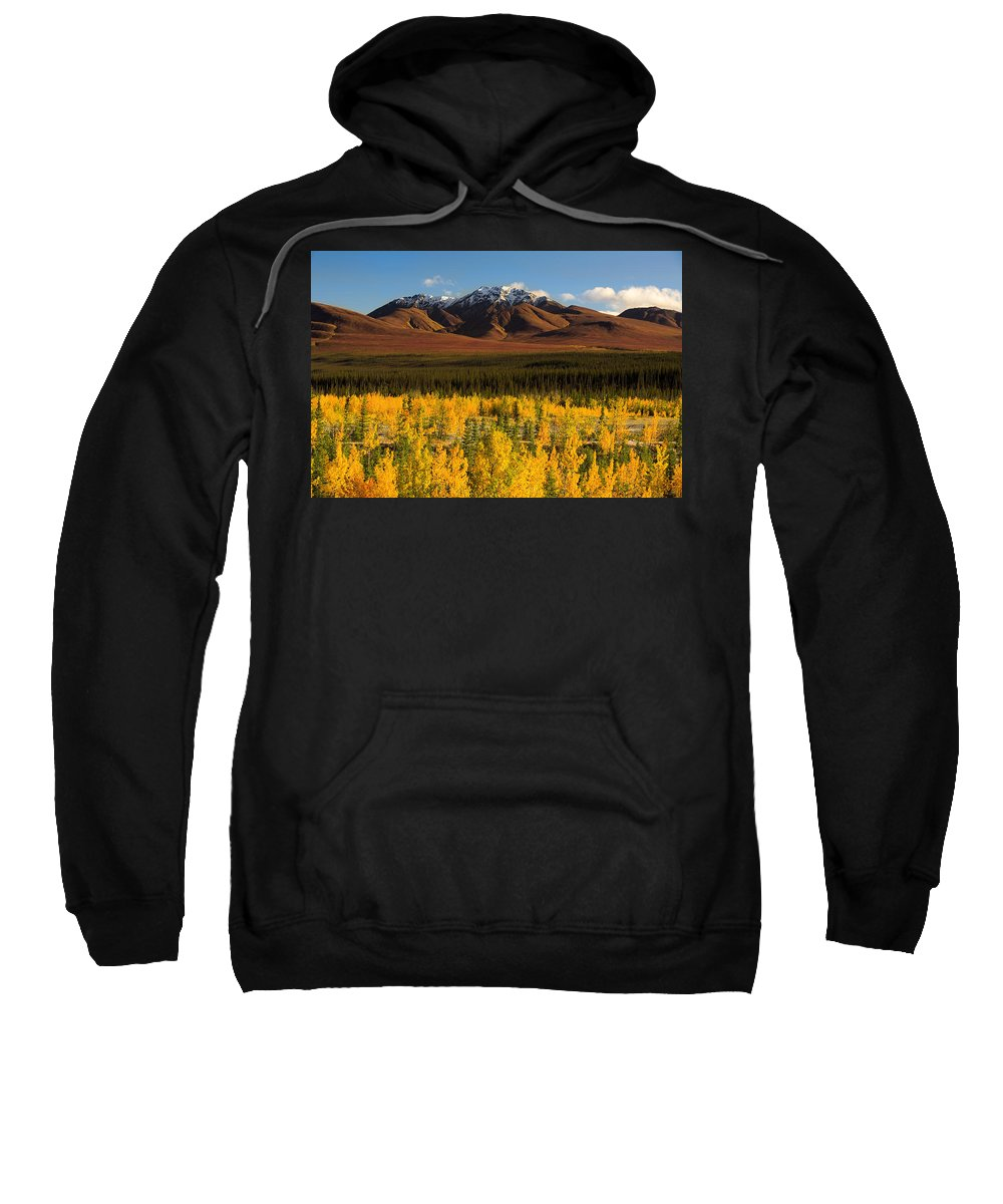 Color Image Sweatshirt featuring the photograph Autumn In Duke Creek by John Sylvester