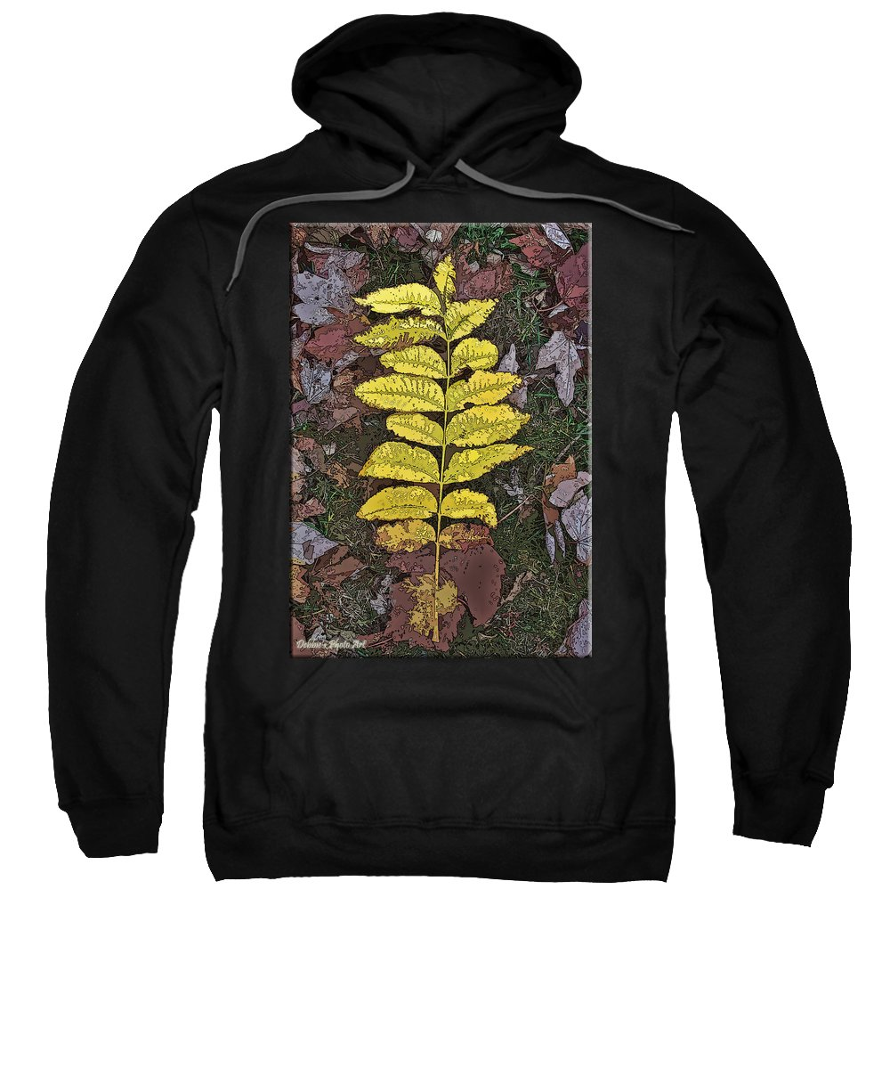 Nature Sweatshirt featuring the photograph Autumn Leaf Art I by Debbie Portwood