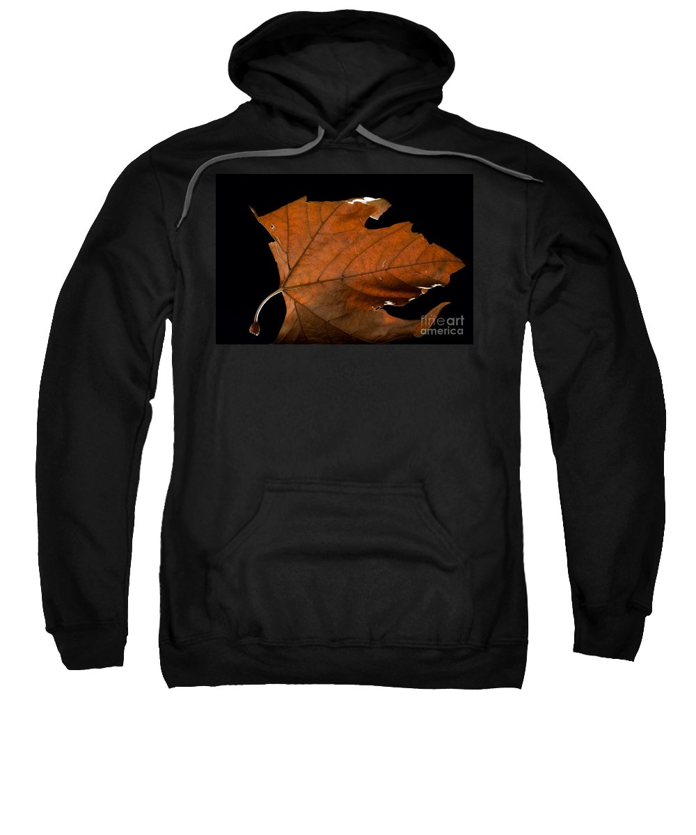 Leaf Sweatshirt featuring the photograph Autumn Leaf by Mats Silvan