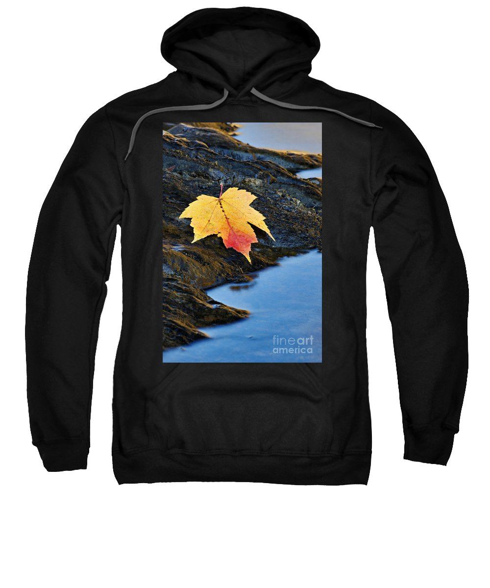 Rock Sweatshirt featuring the photograph Autumn On The Tellico River - D004558 by Daniel Dempster