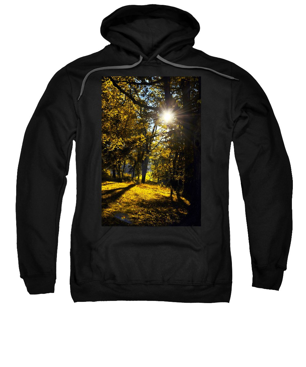 Autumn Sweatshirt featuring the photograph Autumnal Morning by Bill Cannon
