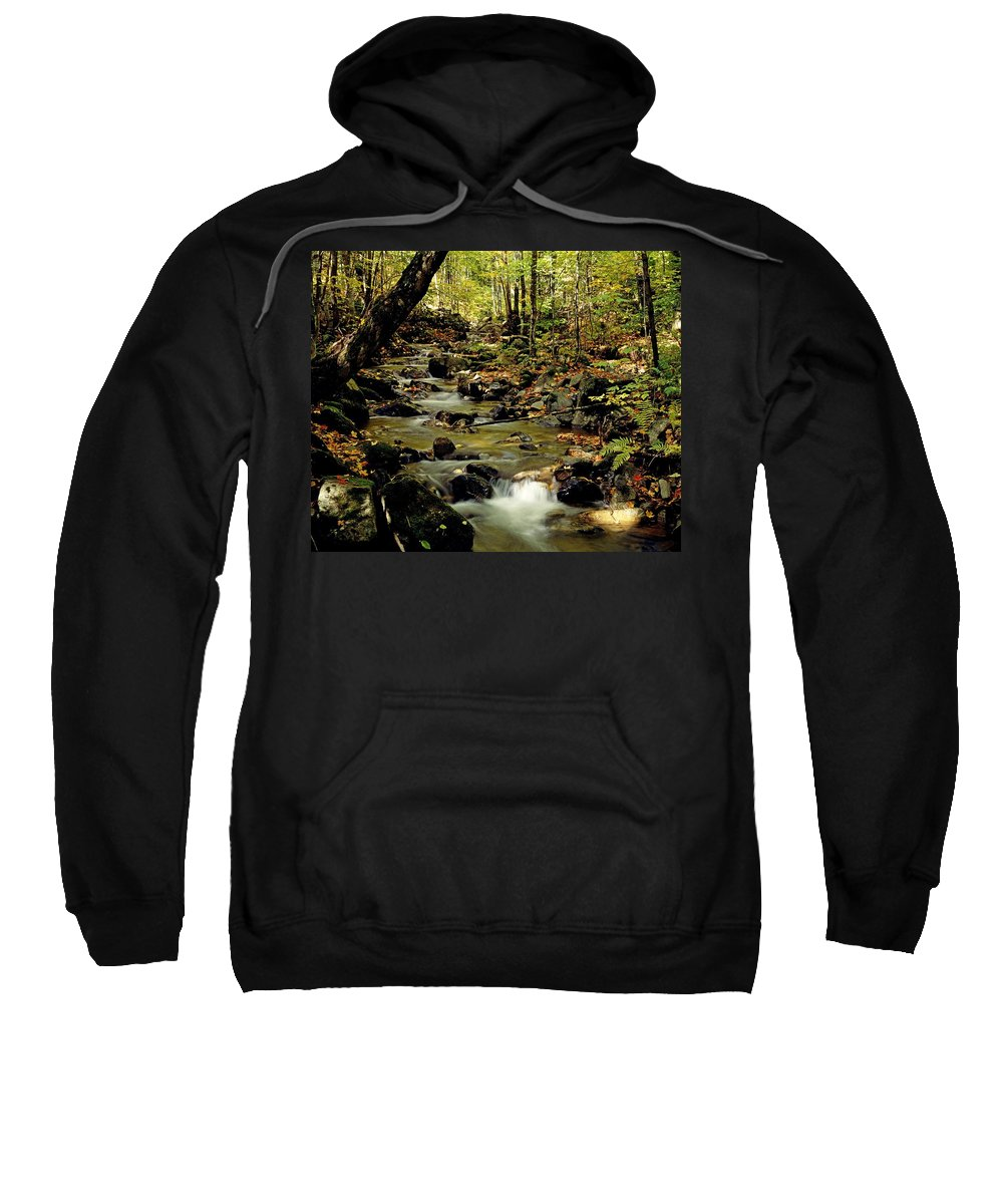 Autumn Colors Sweatshirt featuring the photograph Babbling Brook by David Chapman