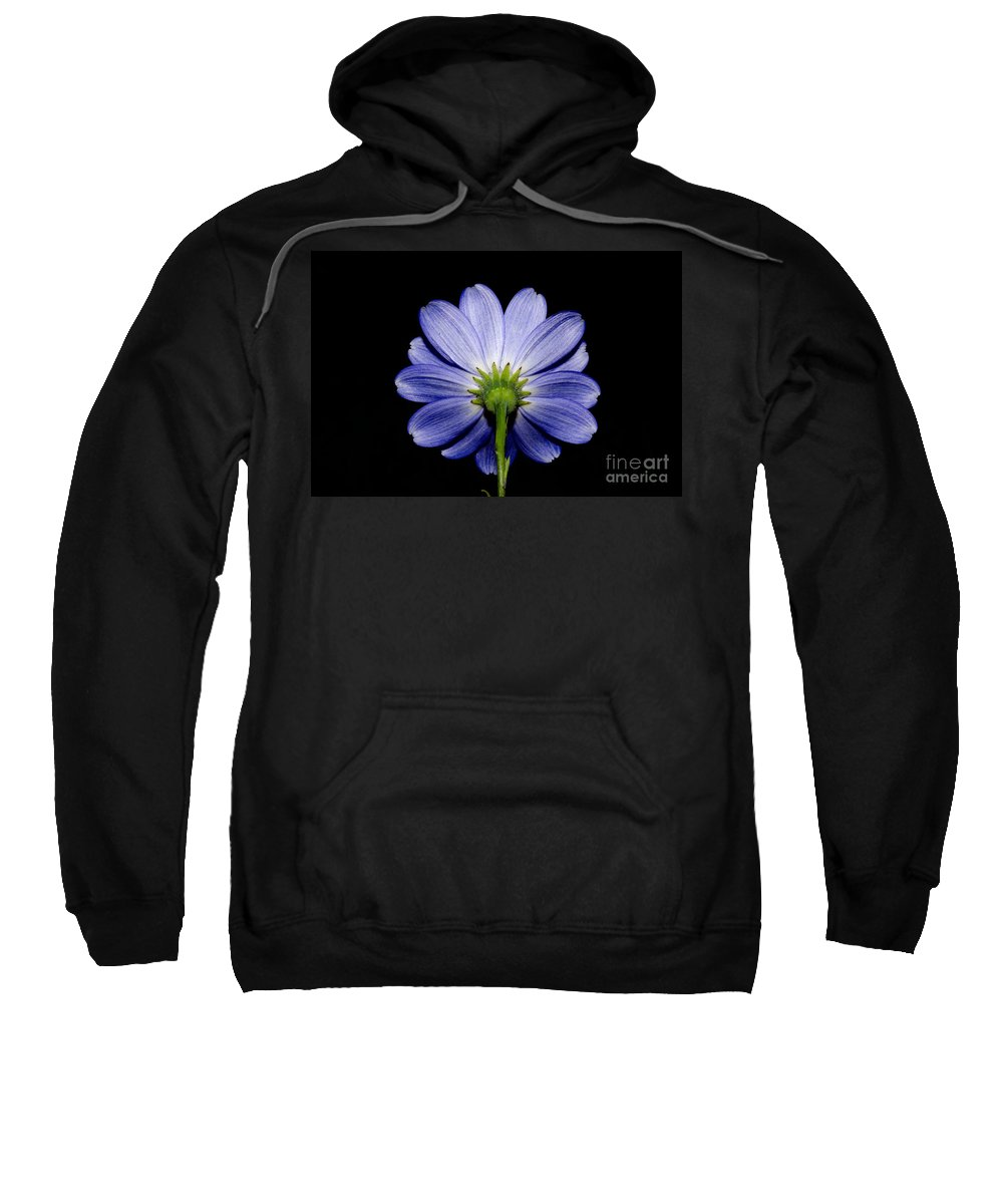 Flower Sweatshirt featuring the photograph Backside Of A Blue Flower by Mats Silvan