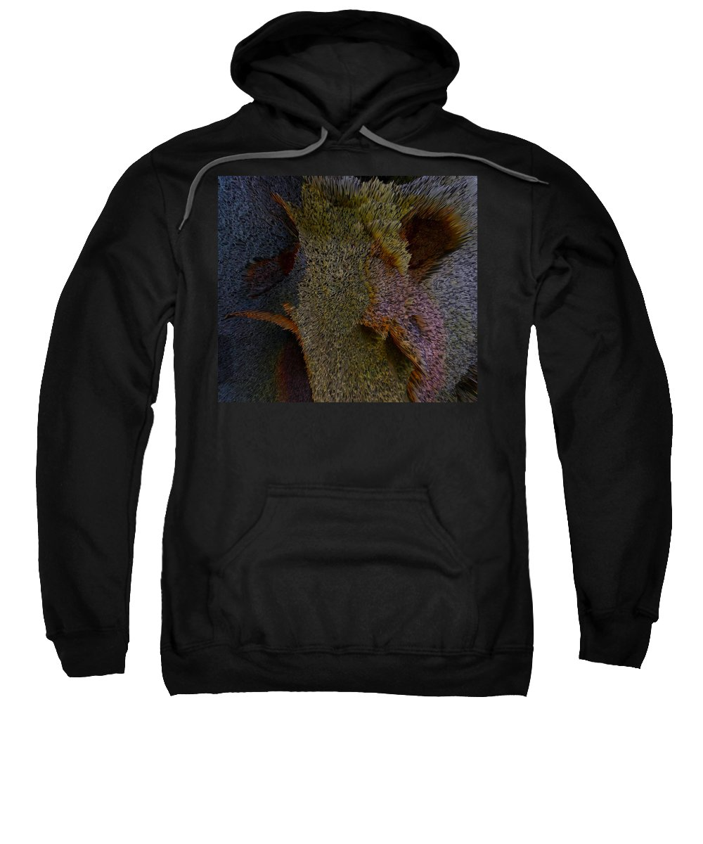 Trees Sweatshirt featuring the photograph Bees Of America by Robert Margetts