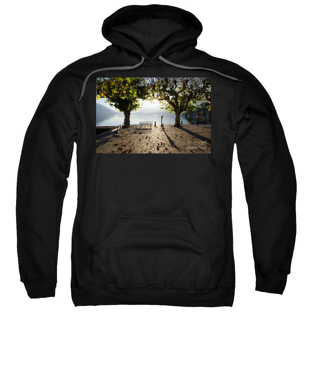 Bench Sweatshirt featuring the photograph Bench And Trees On The Lake Front by Mats Silvan