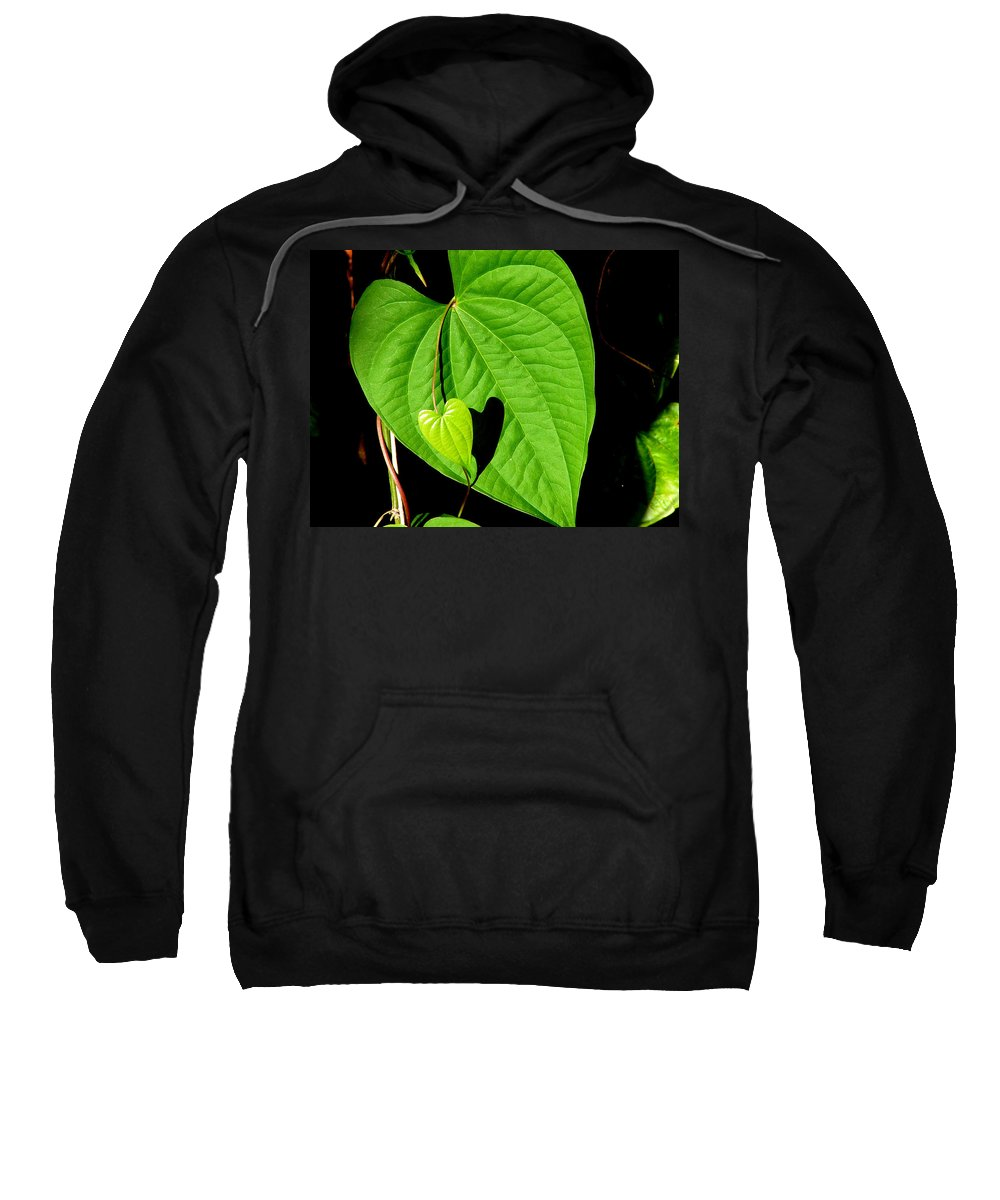 Leaf Sweatshirt featuring the photograph Big Heart Little Heart by David Weeks