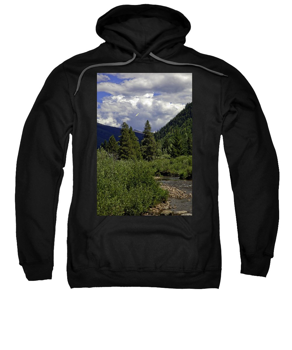 Vail Sweatshirt featuring the photograph Bird Over Vail 1 by Madeline Ellis