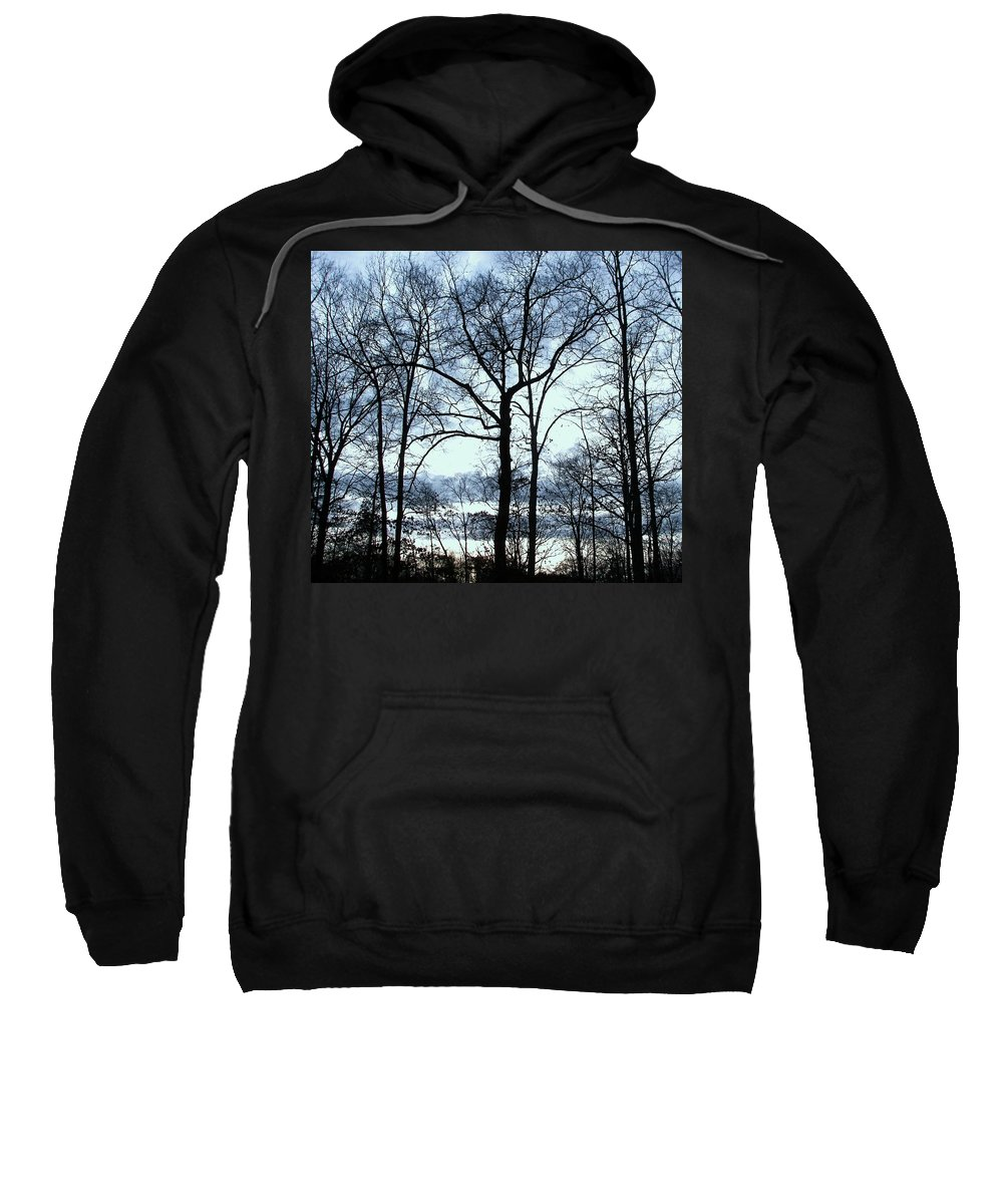 Trees Sweatshirt featuring the photograph Blue Mirage by Pamela Hyde Wilson
