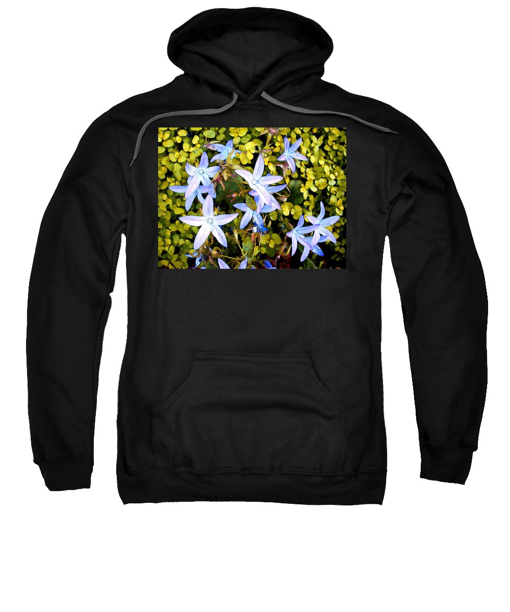 Flower Flowers Garden Star Blue Ground+cover Flora Floral Nature Natural Bloom Blooms Blossoms Blossom Bouquet Arrangement Colorful Plant Plants Botanical Botanic Blooming Gardens Gardening Tropical Sweatshirt featuring the painting Blue Star Flowers by Elaine Plesser