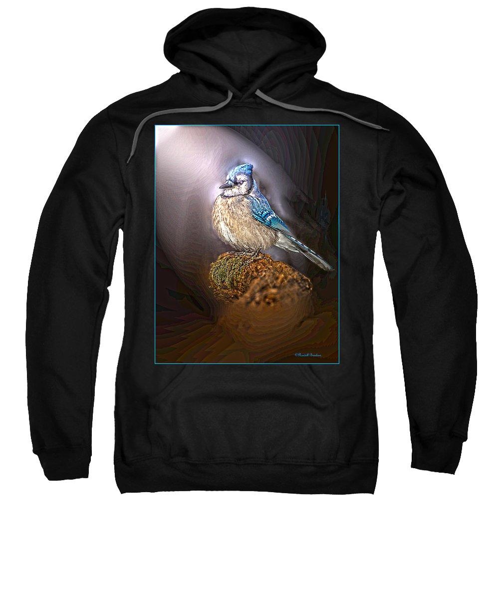 Blue Jay On Moss Snag Sweatshirt featuring the photograph Bluejay In Spotlight by Randall Branham