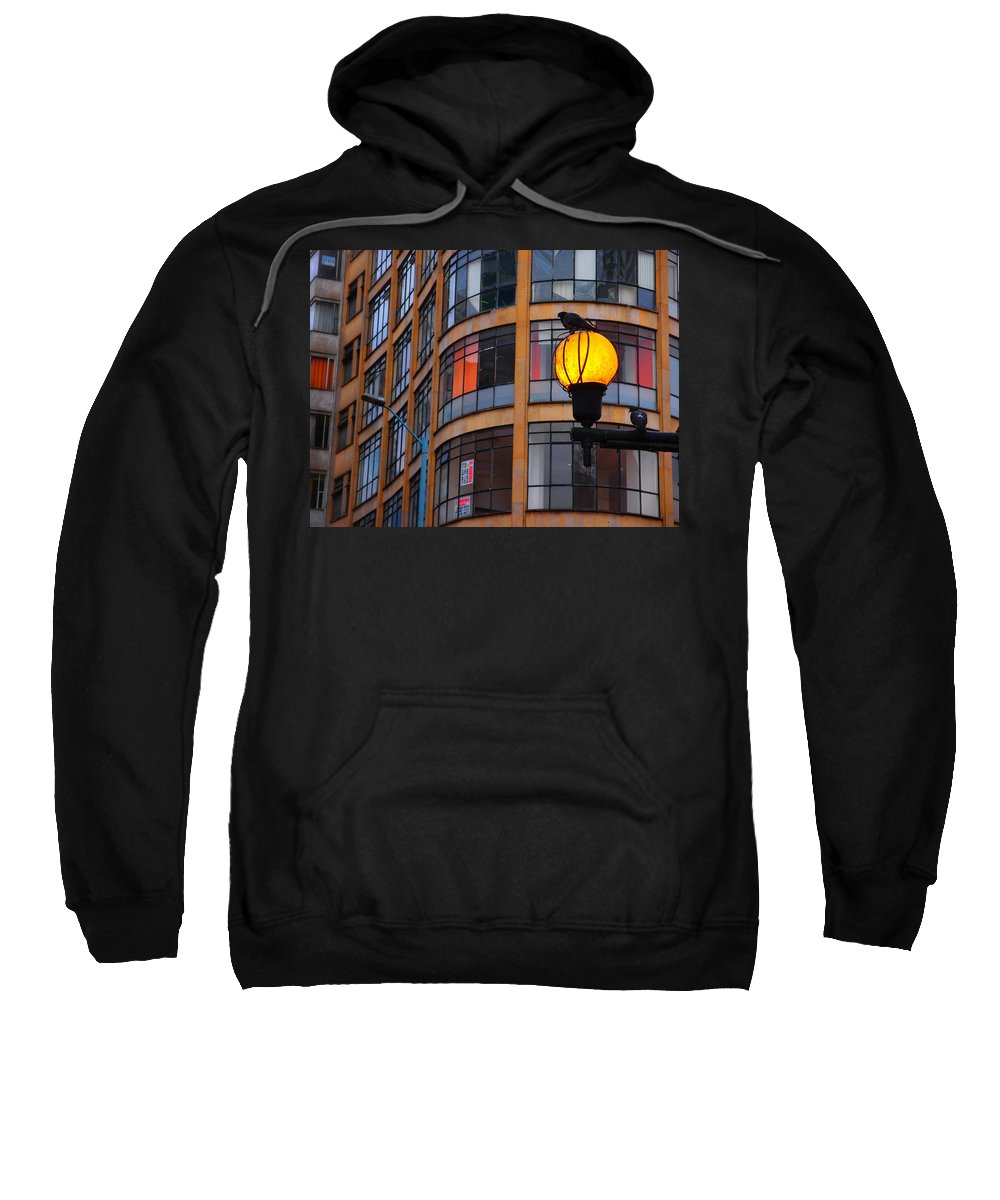 Bogota Sentry Sweatshirt featuring the photograph Bogota Sentry by Skip Hunt