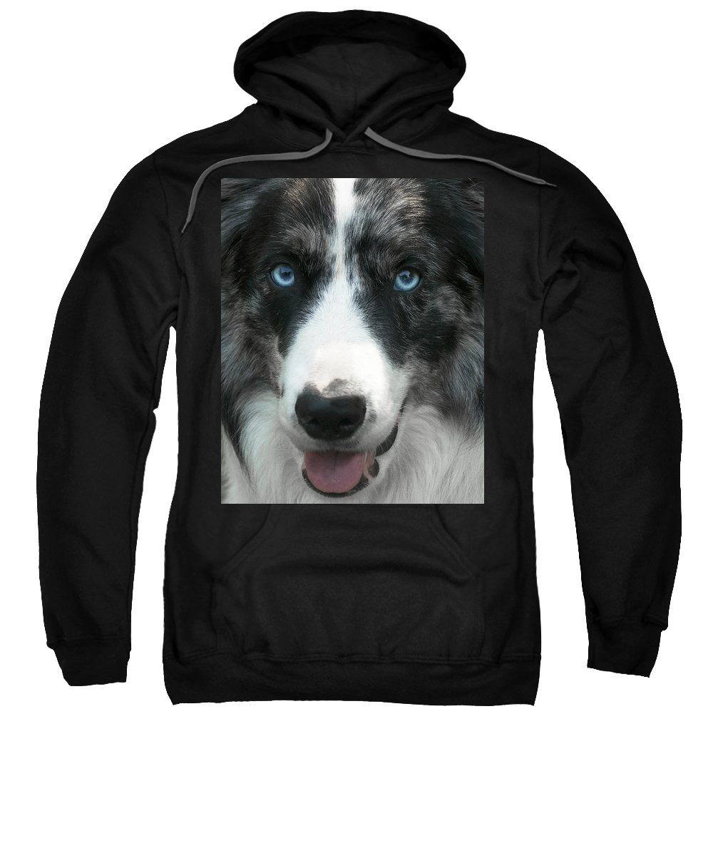 Dog Sweatshirt featuring the photograph Bolt by David Resnikoff