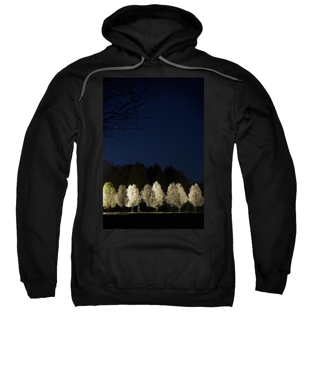 Color Image Sweatshirt featuring the photograph Bradford Pear Trees, Tennessee, Usa by Gregory Byerline
