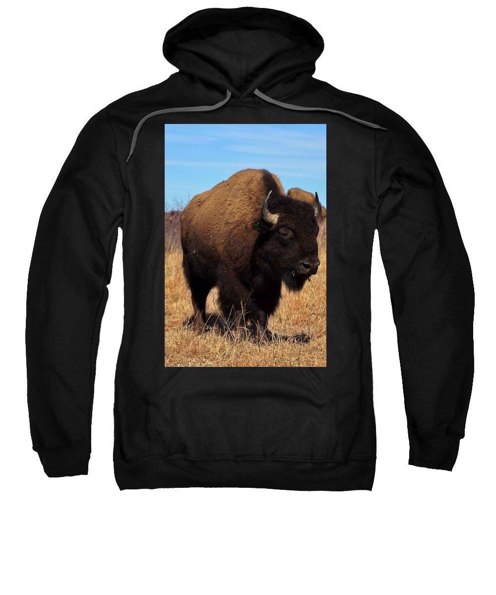 Buffalo Sweatshirt featuring the photograph Buffalo by Alan Hutchins