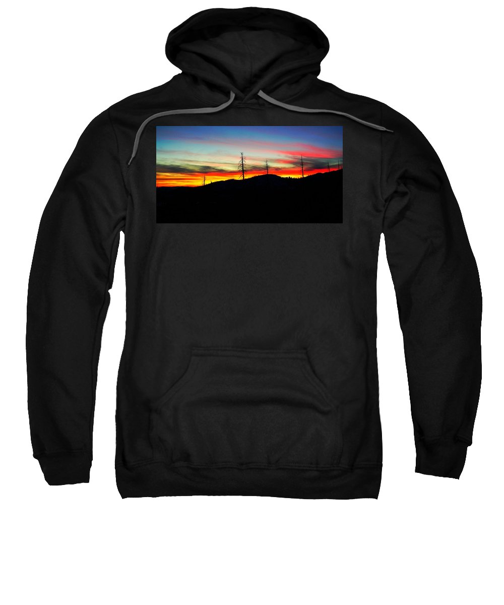 Nature Sweatshirt featuring the photograph Buona Note by Phil Cappiali Jr