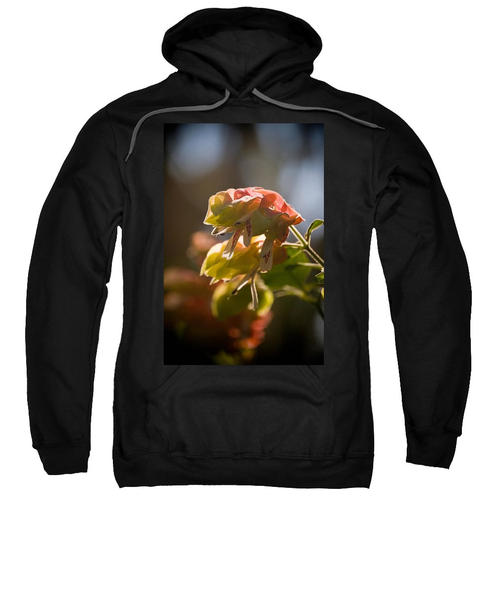 Orchid Sweatshirt featuring the photograph Carly's Cuteness by Trish Tritz