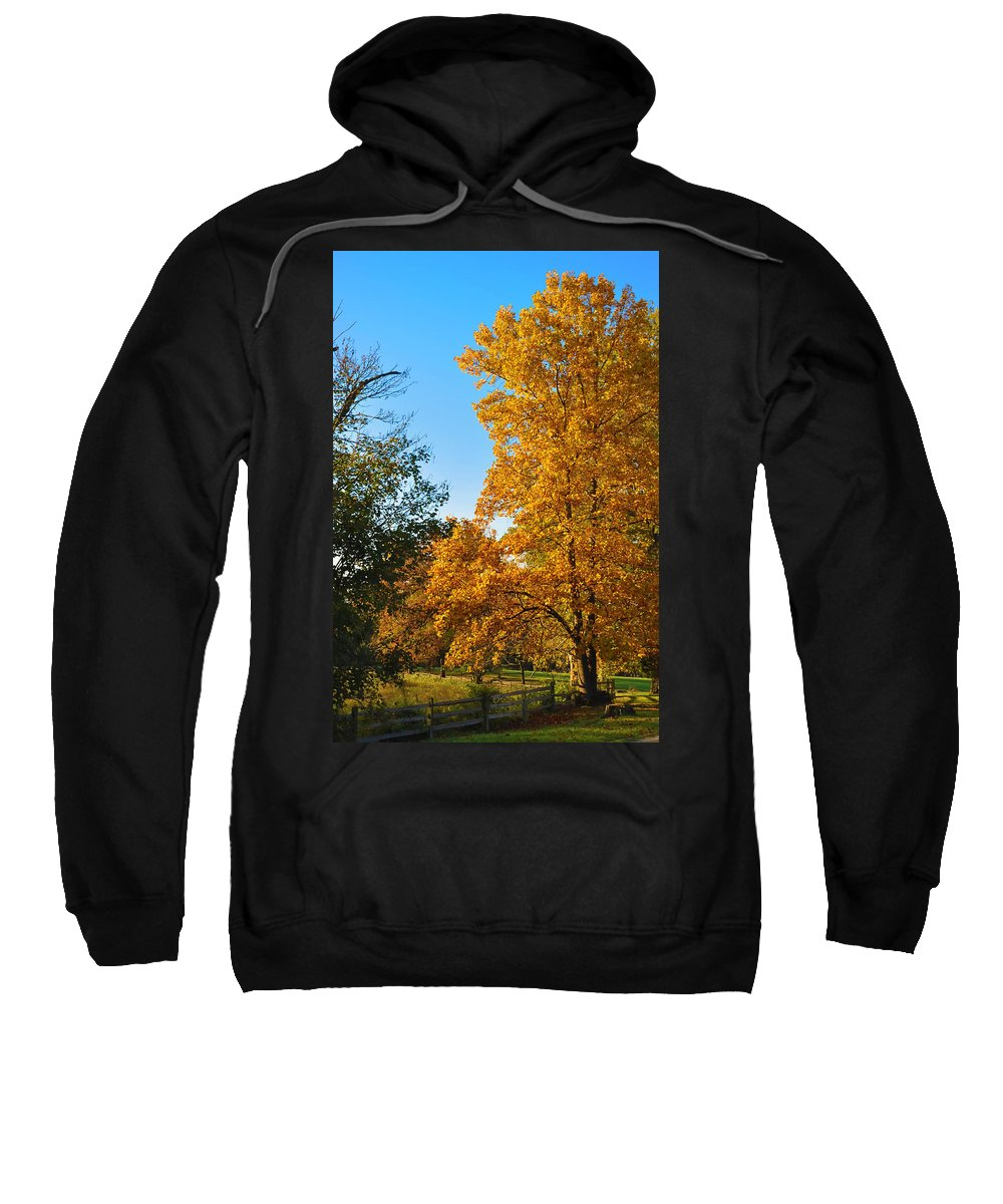 Fall Sweatshirt featuring the photograph Changing Leaves by Bill Cannon
