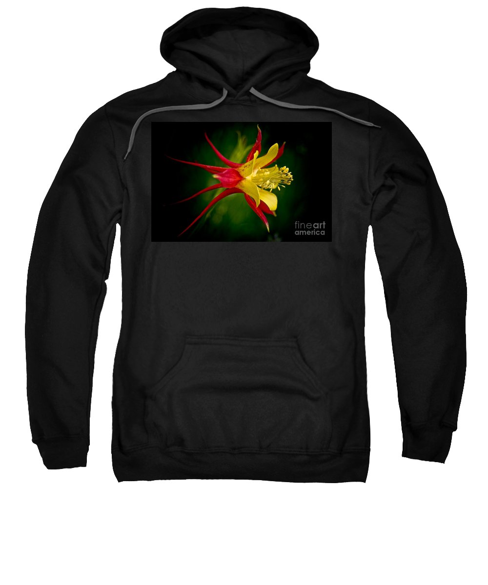 Floral Sweatshirt featuring the photograph Columbine by Larry Carr