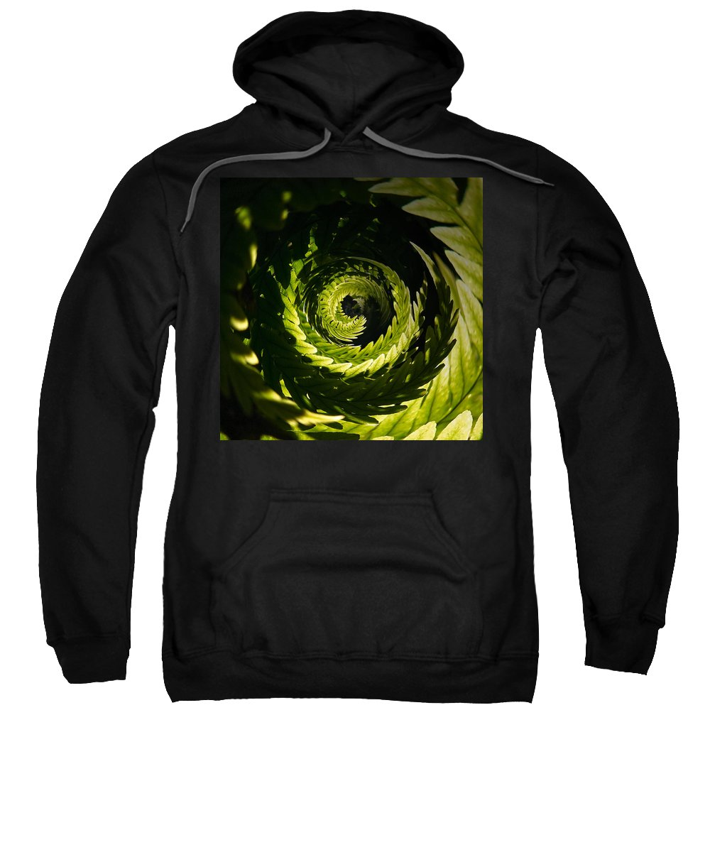 Helvetinjarvi National Park Sweatshirt featuring the photograph Common Polypody Swirl by Jouko Lehto