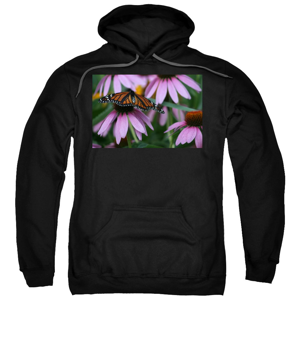 Nature Sweatshirt featuring the photograph Cone Flowers And Monarch Butterfly by Kay Novy
