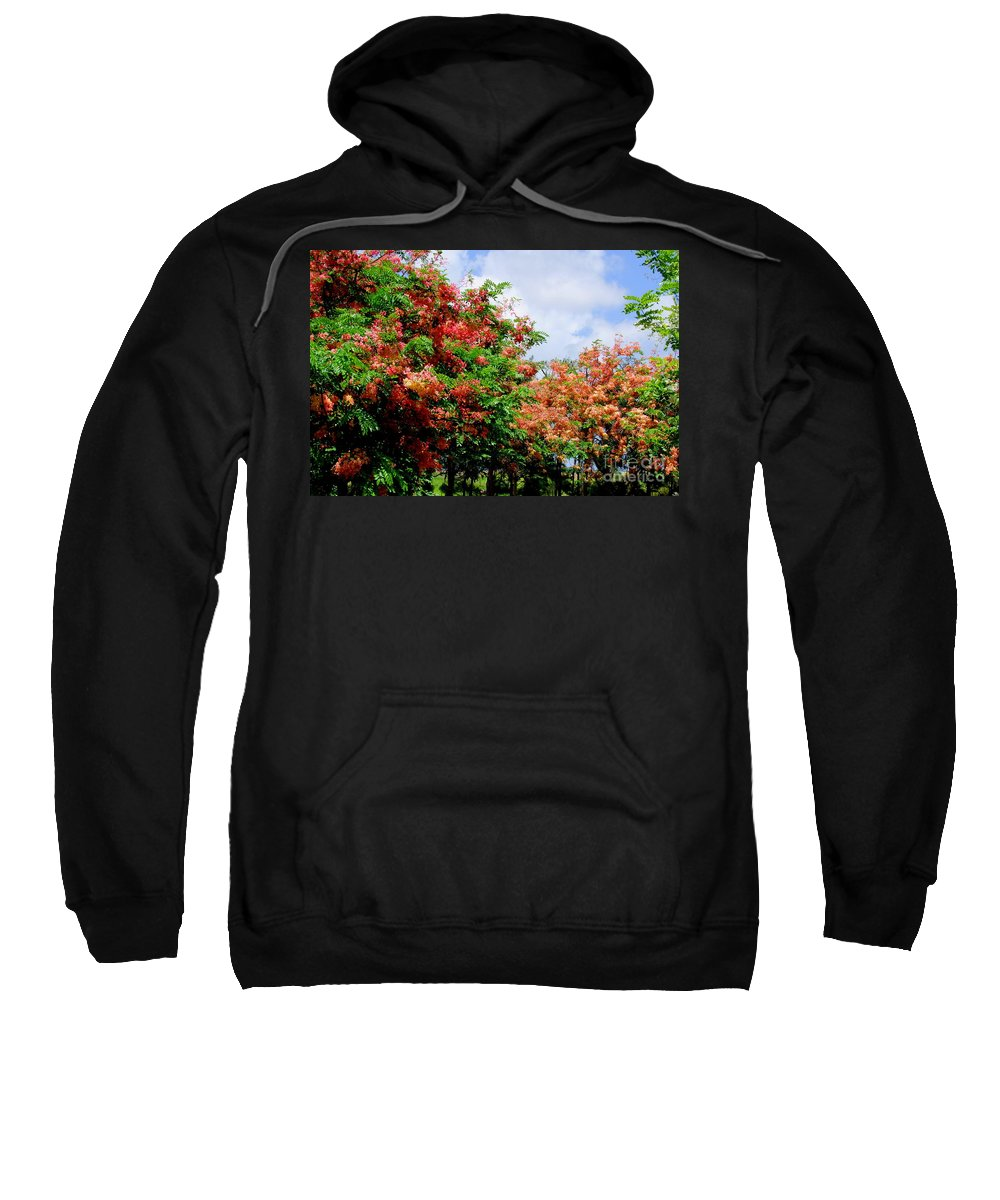 Coral Sweatshirt featuring the photograph Coral Shower Trees by Mary Deal