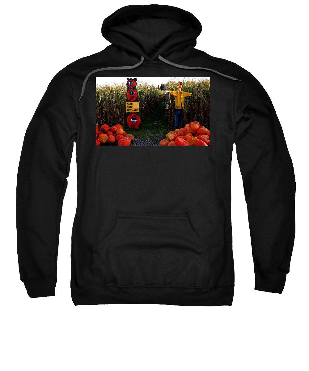 Usa Sweatshirt featuring the photograph Corn Maze by LeeAnn McLaneGoetz McLaneGoetzStudioLLCcom