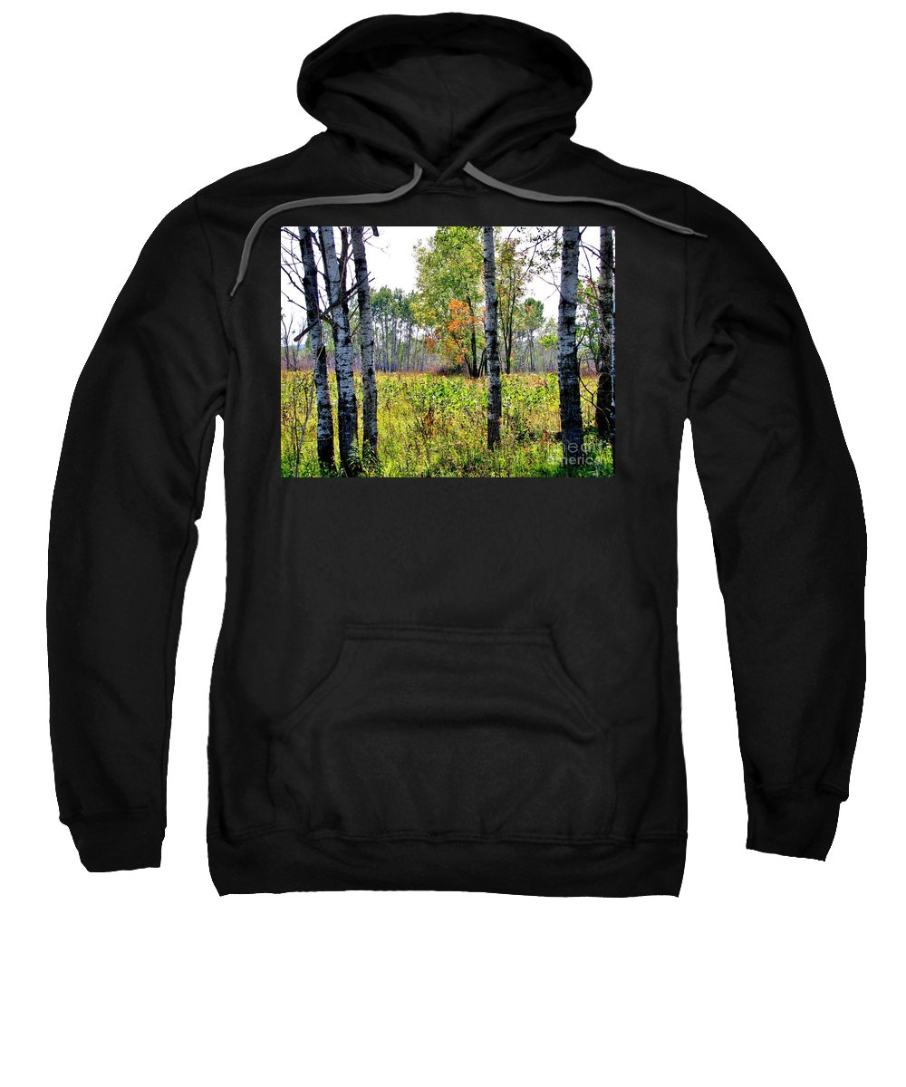 Birch Trees Sweatshirt featuring the photograph Country Autumn by Marilyn Smith