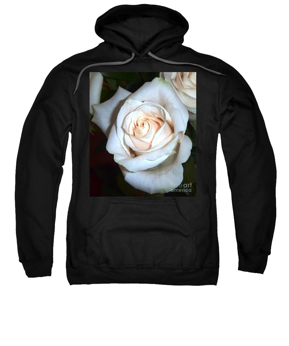 Creamy Rose Sweatshirt featuring the photograph Creamy Rose by Alys Caviness-Gober