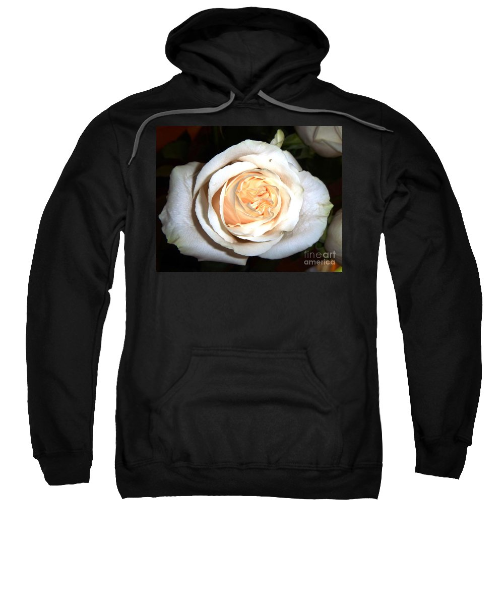 Single Rose Sweatshirt featuring the photograph Creamy Rose I by Alys Caviness-Gober