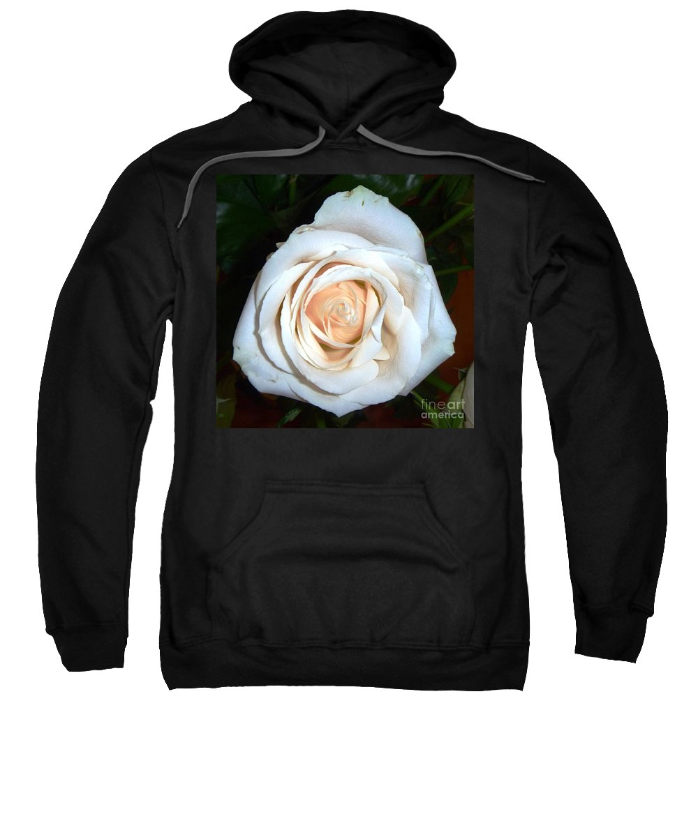 Creamy Rose Sweatshirt featuring the photograph Creamy Rose Iv by Alys Caviness-Gober