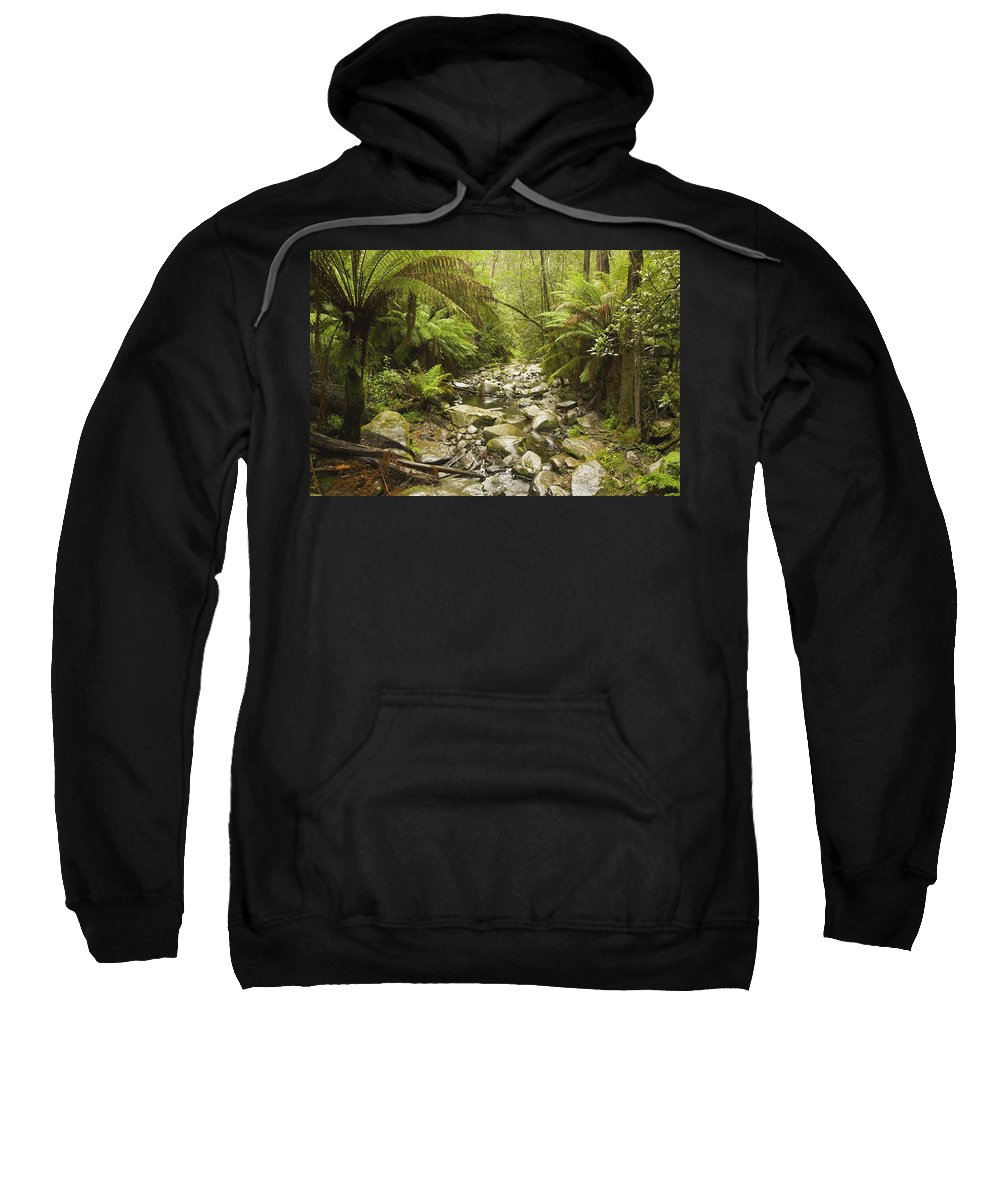 Color Image Sweatshirt featuring the photograph Creek Running Through The Rainforest by John Doornkamp