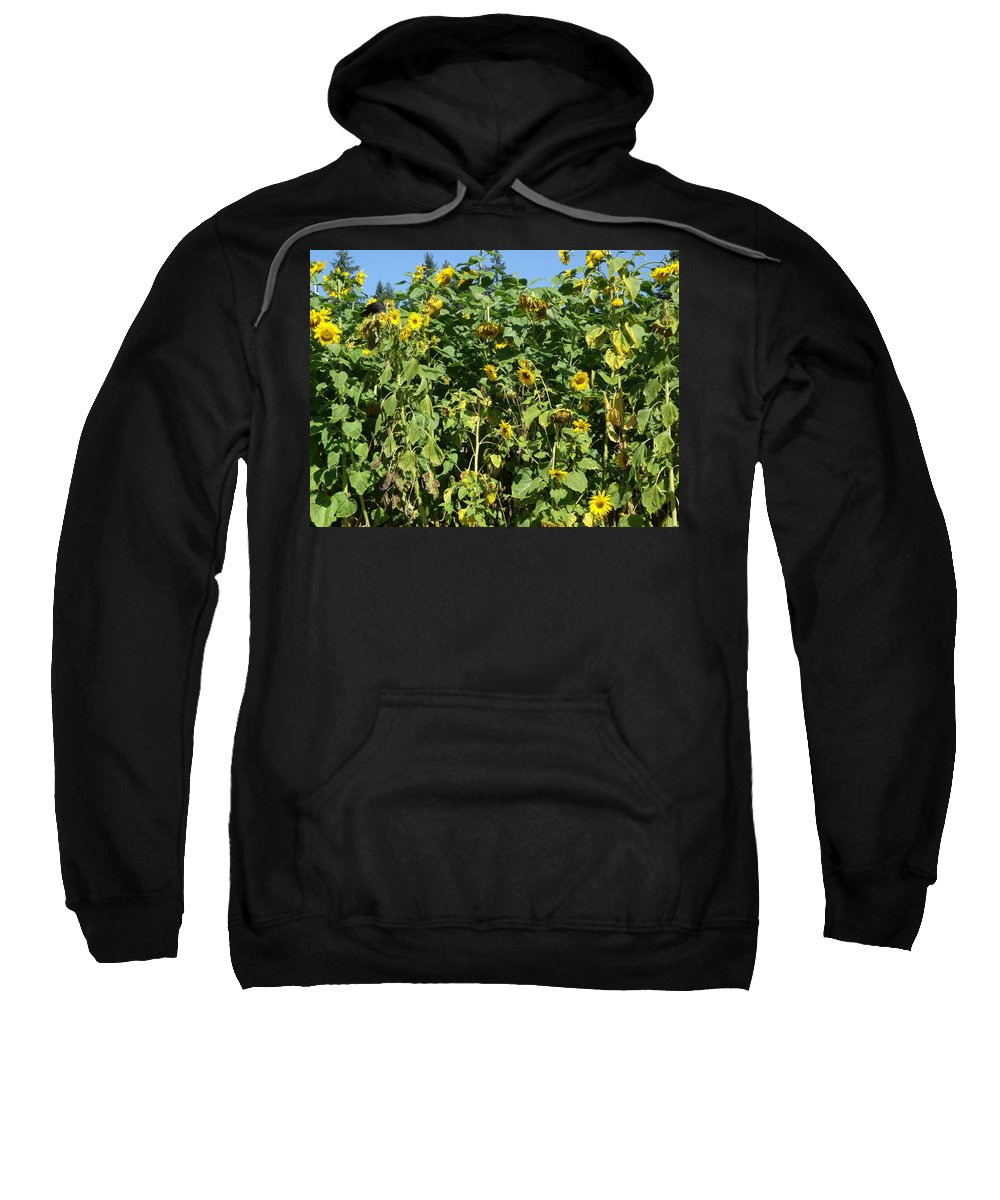 Sunflowers Sweatshirt featuring the photograph Crows In The Sunflowers by Kym Backland