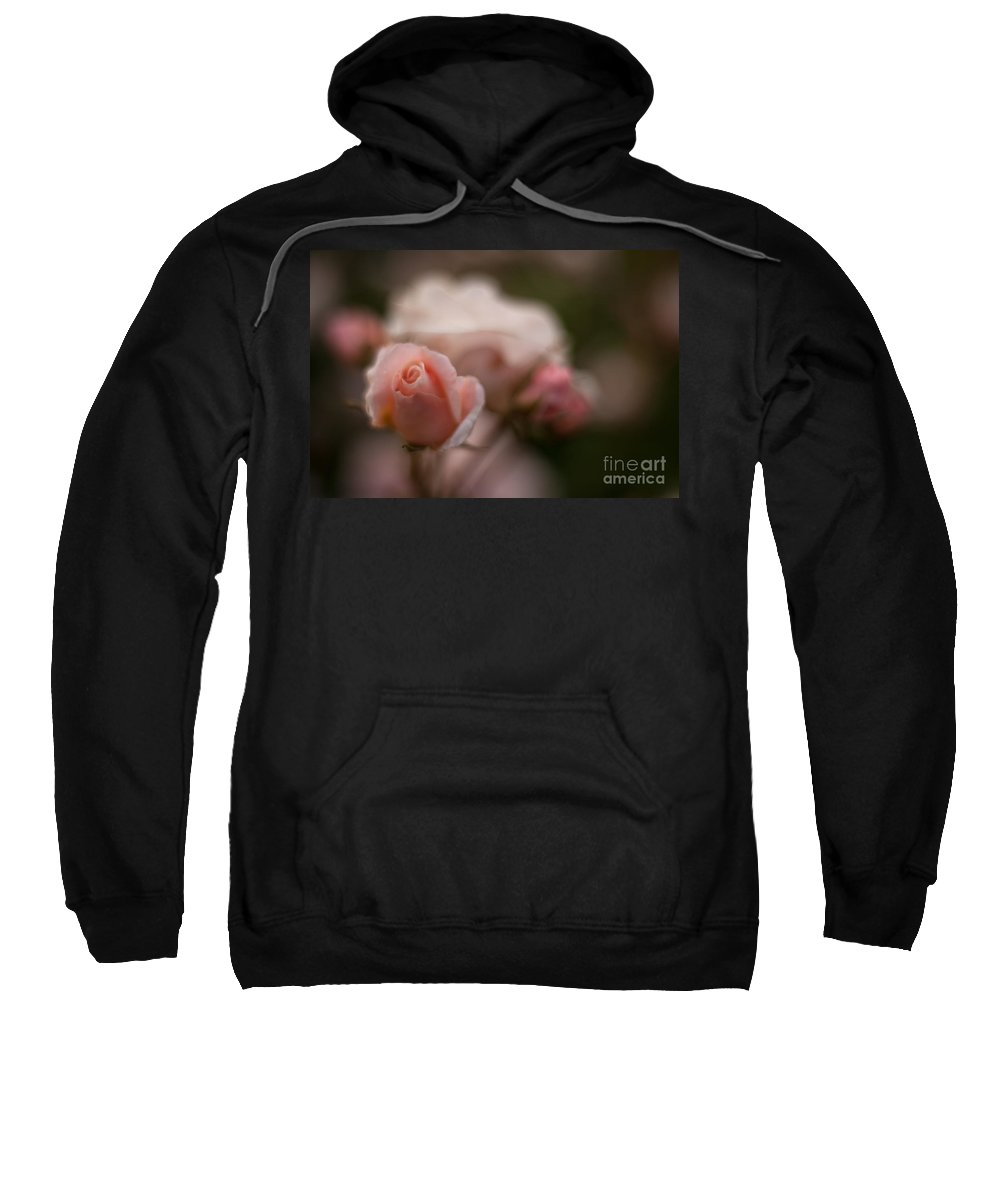 Flower Sweatshirt featuring the photograph Curls by Mike Reid