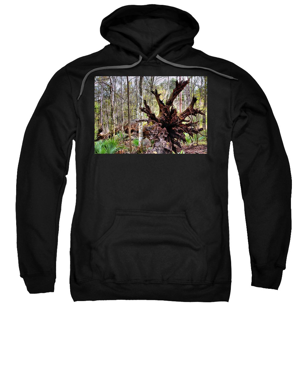 Cypress Sweatshirt featuring the photograph Cypress Roots by Kristin Elmquist