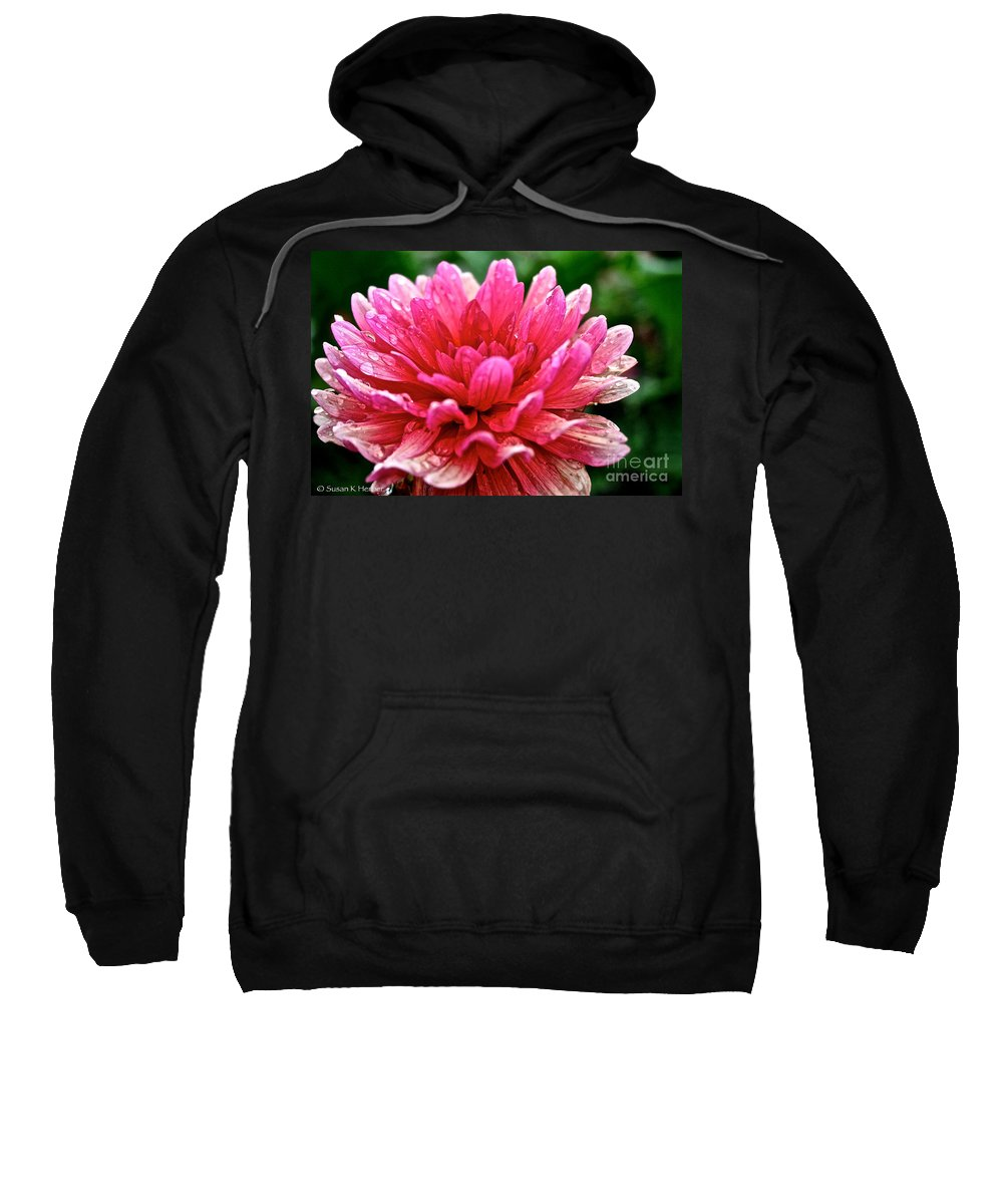 Floral Sweatshirt featuring the photograph Dahlia Dew Drops by Susan Herber