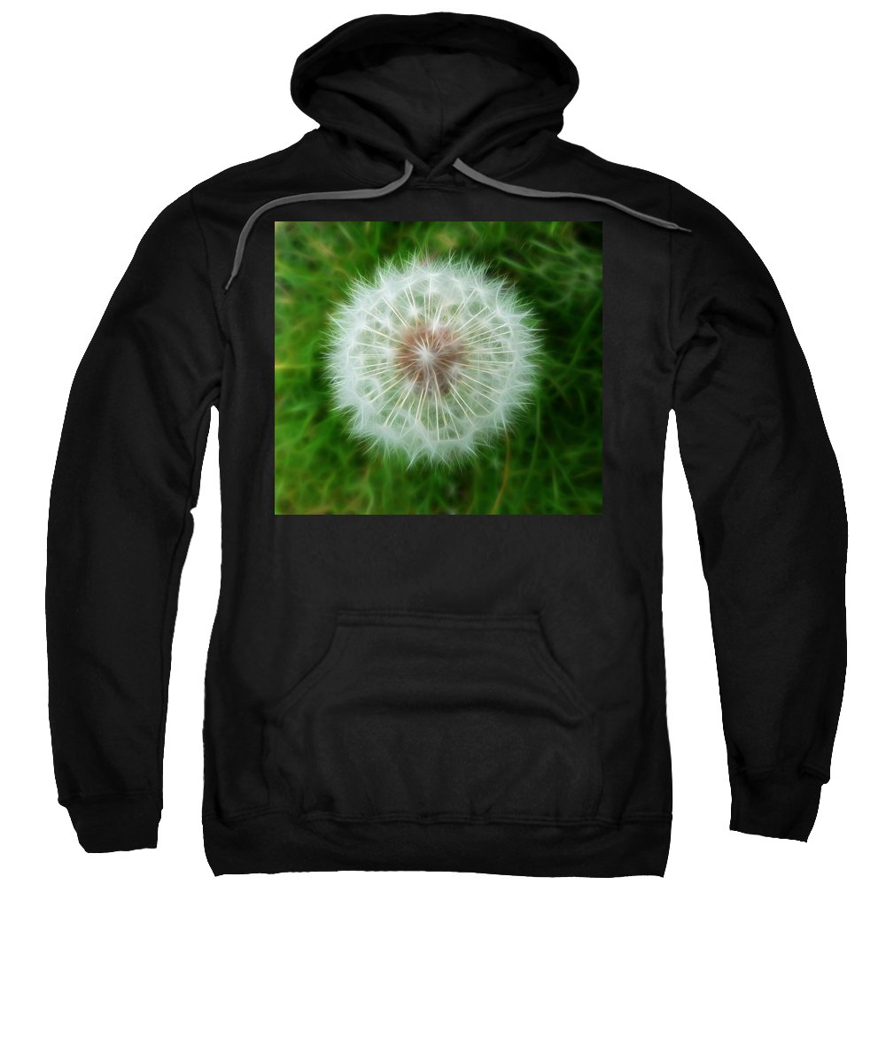 Dandelion Seed Head With Fractalius Effect Sweatshirt featuring the photograph Dandelion Seed Head by Lynn Bolt