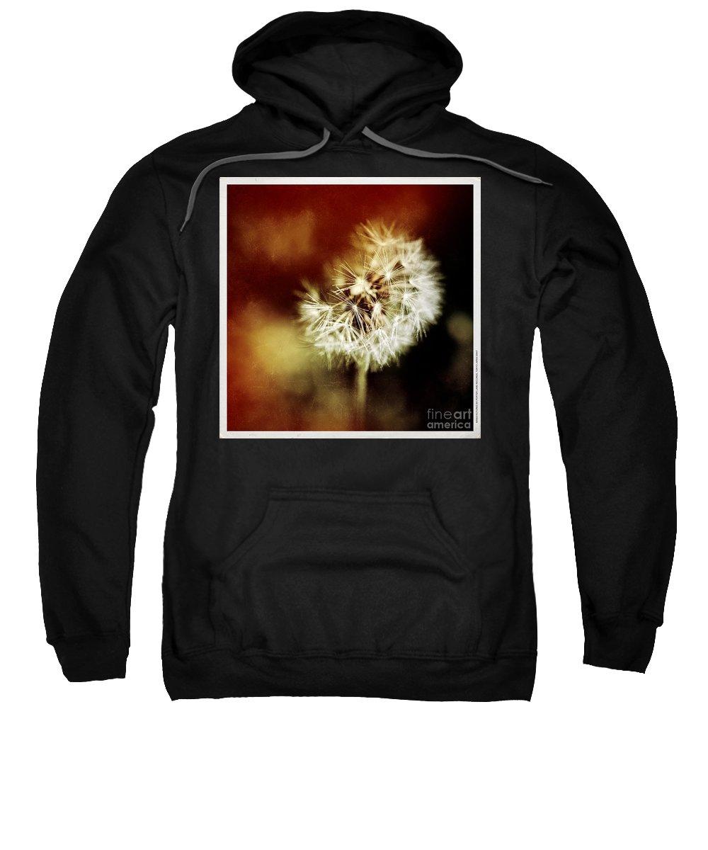 Dandelion Sweatshirt featuring the photograph Dandelion by Silvia Ganora