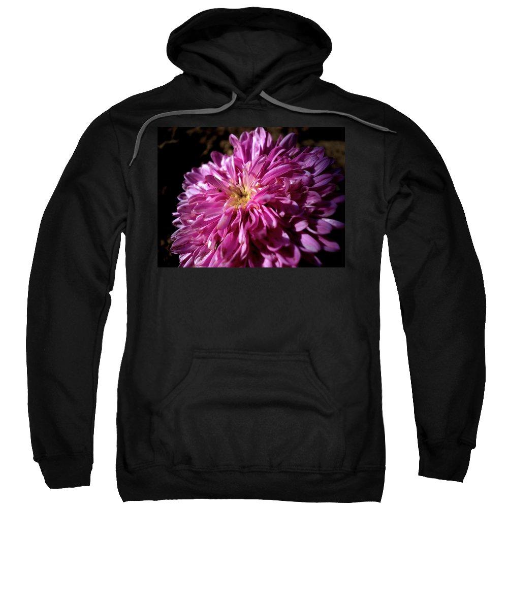 Flower Sweatshirt featuring the photograph Dawn Flower by Sumit Mehndiratta